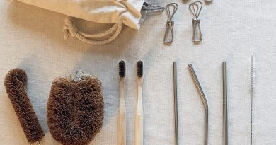Image is of zero waste items such as metal pegs, kitchen scrubbers, toothbrushes and metal straws.
