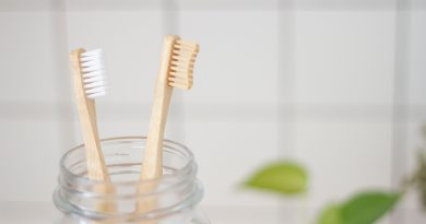 Image is of two bamboo toothbrushes in clear glass jar.