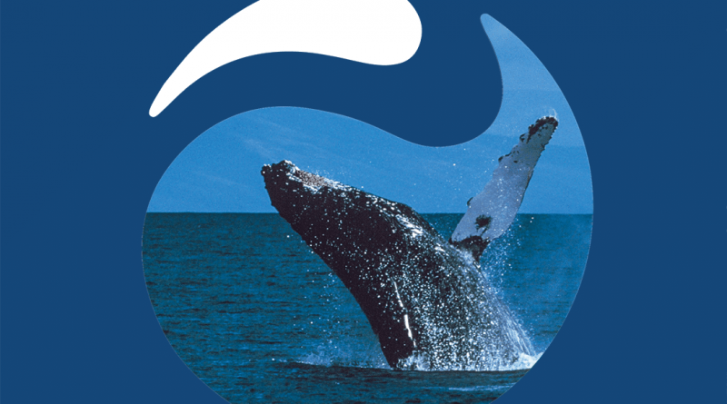 World Oceans Day promotional ad with a whale breaching in the ocean.